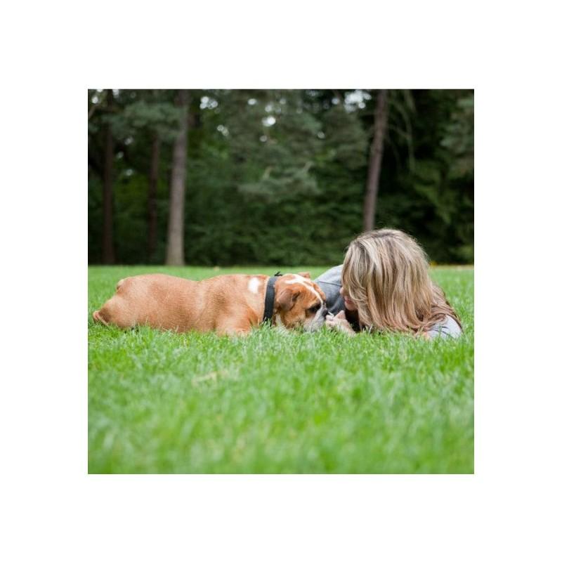 Elektronický výcvikový obojek PetSafe Little Dog 100m