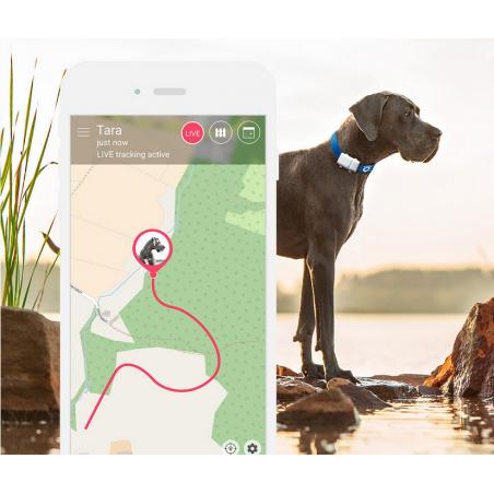 Tractive XL GPS lokátor pro domácí mazlíčky