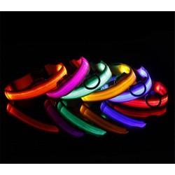 LED svítící obojek